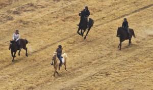 Horses Running 4 a